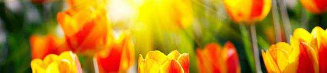 Поздравление крестной с праздником 8 марта